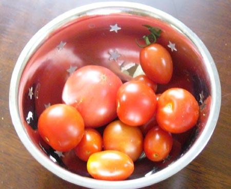 0808_tomato_1_