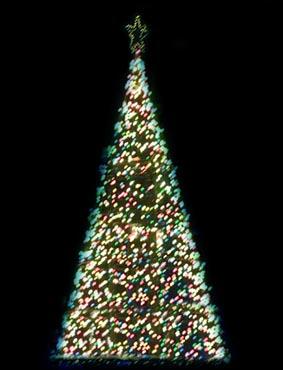 091225_christmastree_1
