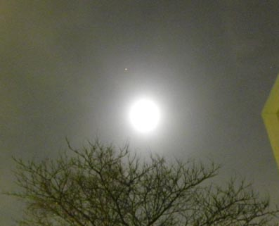 20100130_bluemoon_1
